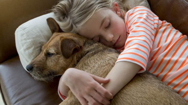 Young girl cuddling with dog on a sofa at home.